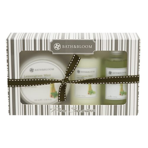 LEMONGRASS MINT MINI BOX SET
